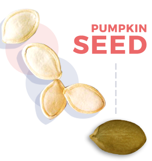 does pumpkin seeds help bladder control
